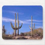 Cactus gigante armado multi del Saguaro, Saguaro Alfombrillas De Ratón