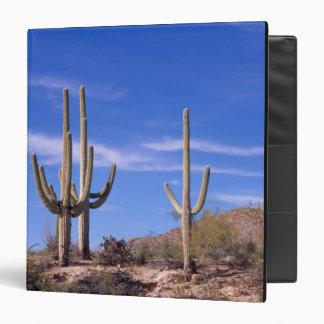 "Cactus gigante armado multi del Saguaro, Saguaro Carpeta 1 1/2"""
