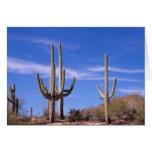 Cactus gigante armado multi del Saguaro, Saguaro Tarjeta De Felicitación