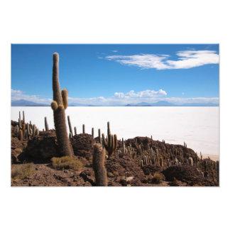 Cactus gigante en la impresión de la foto de Salar Cojinete