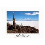 Cactus gigante en la postal de la frontera de