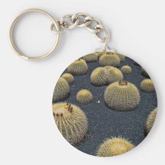 Cactus, grusonii del echinocactus llavero personalizado
