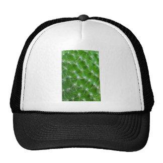 Cactus Trucker Hat