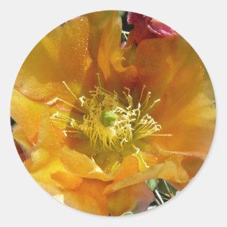 Cactus in Bloom Classic Round Sticker