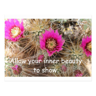 Cactus Inner Beauty Postcard