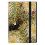 Cactus iPad Mini Cárcasa