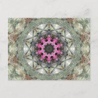 Cactus Kaleidoscope Postcard