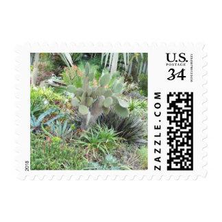 Cactus Landscape Postage Stamps