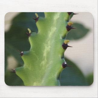 Cactus Leaf Mouse Pad