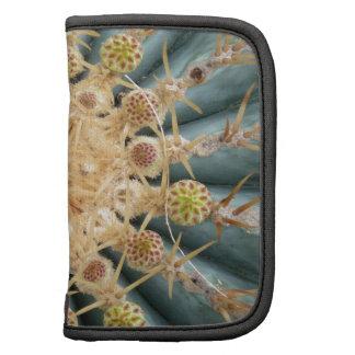 Cactus macros -- Estilo en colores pastel al sudoe Planificador
