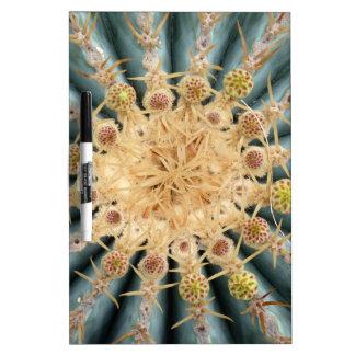 Cactus macros -- Estilo en colores pastel al sudoe Tablero Blanco