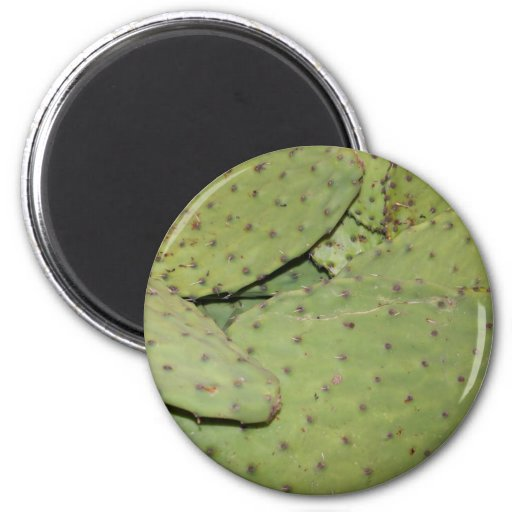 Cactus Mania Food Photo Gear 2 Inch Round Magnet