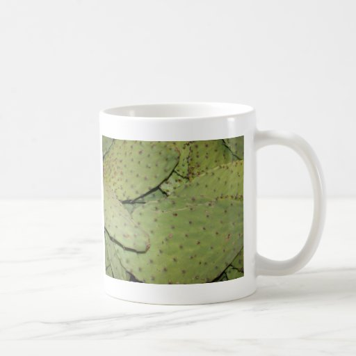Cactus Mania Food Photo Gear Coffee Mug