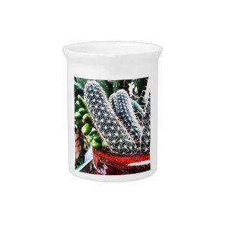 Cactus (mini planta) jarras para bebida