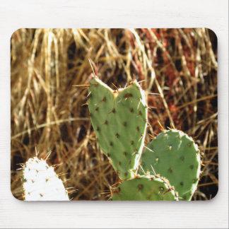 Cactus Mousepads