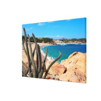 Cactus On Rocky Hilltop Over Sandy Beach Canvas Print