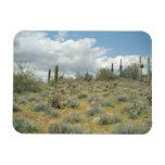 Cactus Pastoral Decorative Western Photo Magnets