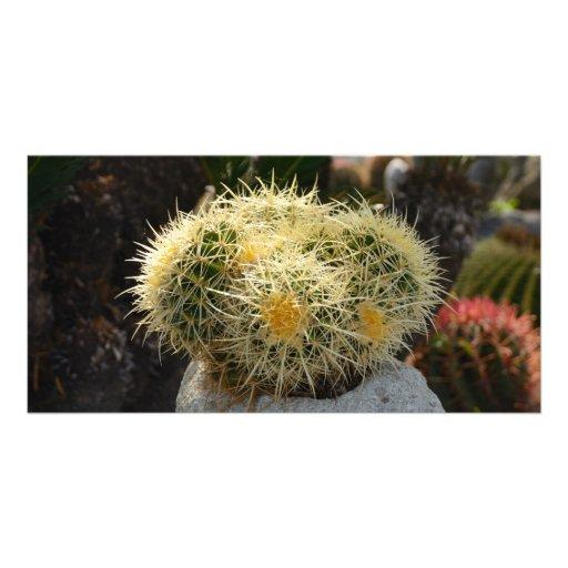 Cactus Photo Card