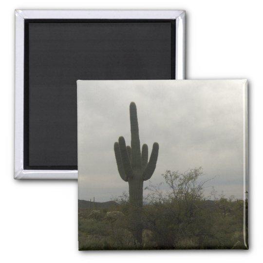 Cactus picture magnet