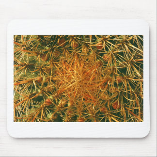 Cactus Picture Mouse Pad