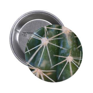 cactus pin redondo de 2 pulgadas