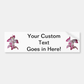 Cactus pink and white flower, succulent bloom bumper sticker