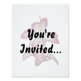 Cactus pink and white flower, succulent bloom 4.25x5.5 paper invitation card