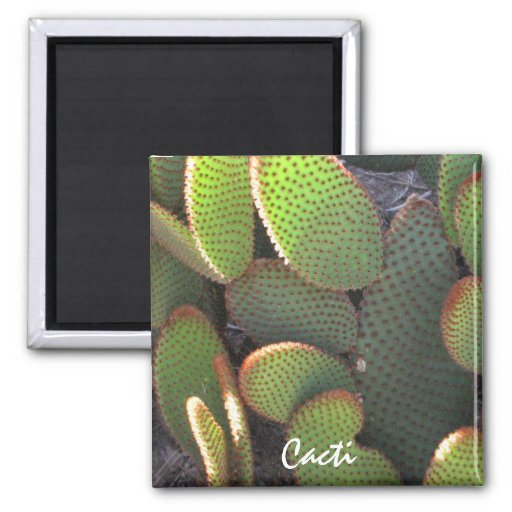 Cactus Plant 2 Inch Square Magnet