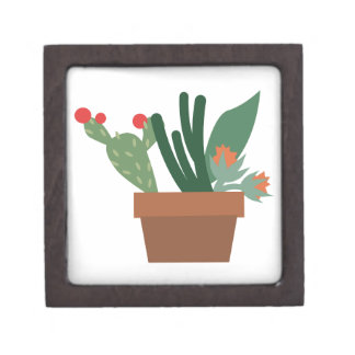 Cactus Plants Premium Jewelry Boxes
