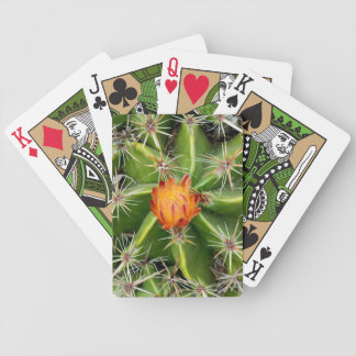 Cactus Playing Cards (select a style)