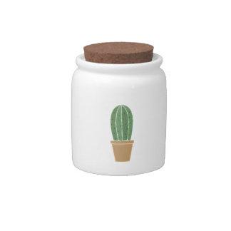 Cactus Potted Jarra Para Caramelo