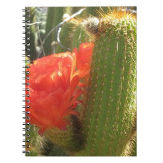 Cactus rojo de la antorcha cuaderno