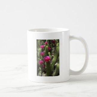 Cactus rosado de la antorcha taza