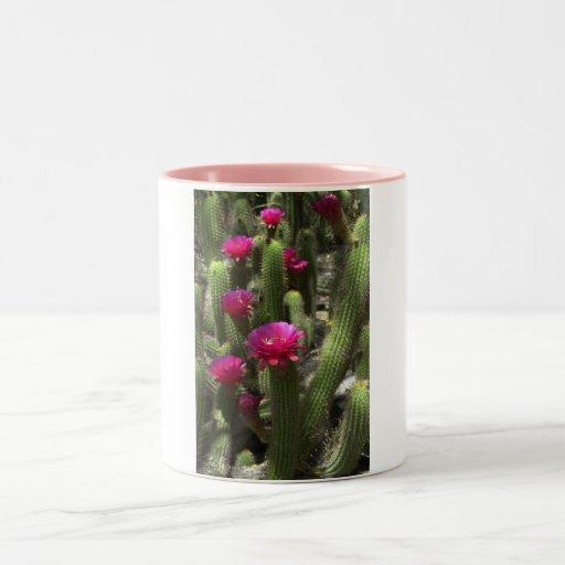 Cactus rosado de la antorcha tazas de café