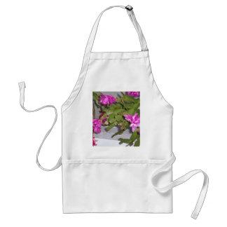 Cactus rosado de la flor delantal