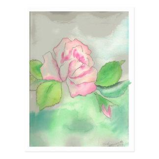 Cactus Rose Postcard