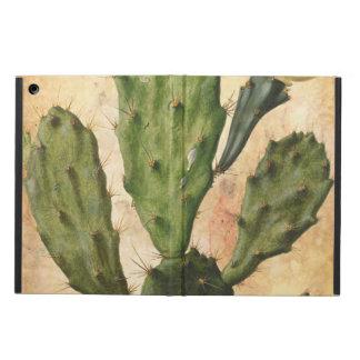 cactus rustic vintage iPad air case