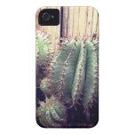 Cactus rústicos iPhone 4 cobertura