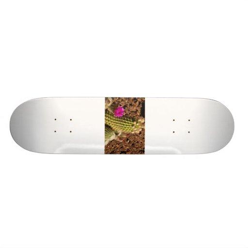 Cactus skateboard