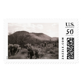 Cactus Skyline Photo Postage Stamp (Arizona)