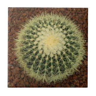 """Cactus Small (4.25"""" x 4.25"""") Ceramic Photo Tile"""