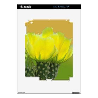 CACTUS SORBET SKIN FOR THE iPad 2