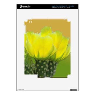 CACTUS SORBET SKINS FOR iPad 3