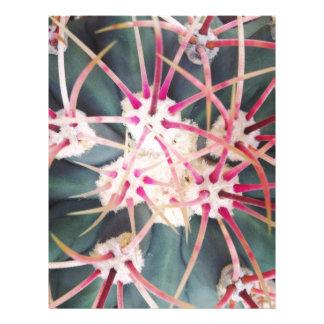 Cactus Spines Letterhead