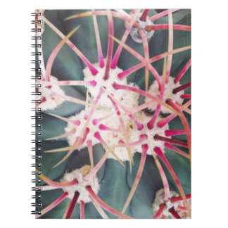 Cactus Spines Notebook