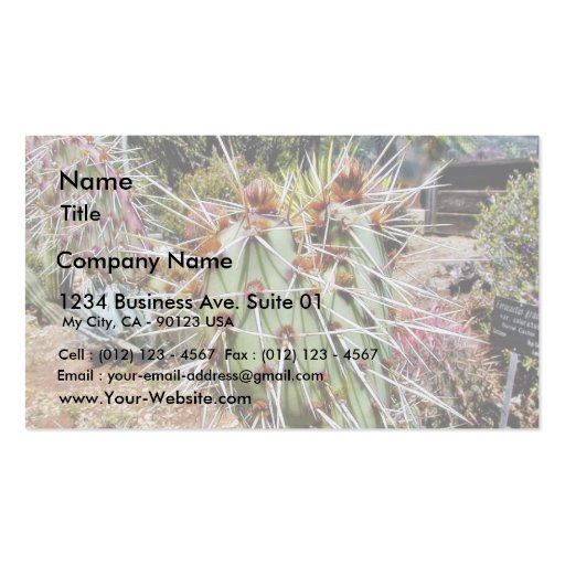 Cactus Spines Thorns Cacti Business Cards