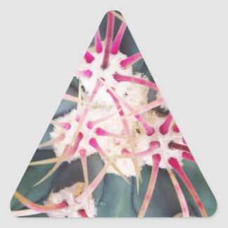 Cactus Spines Triangle Sticker