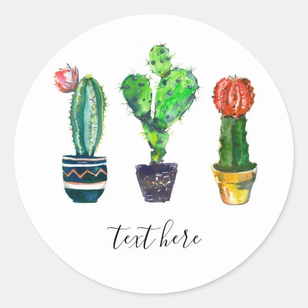 Cactus Succulent Watercolor Fiesta Mexican Classic Round Sticker Zazzle Com