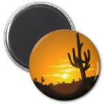 Cactus Sunset Refrigerator Magnets