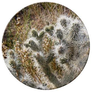 Cactus superventas temático platos de cerámica